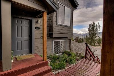 Silverthorne Townhouse For Sale: 113 Spyglass Lane #113