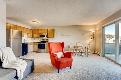 Dillon Condo For Sale: 1173 Straight Creek Drive #G-203
