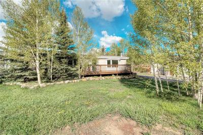 Summit County Single Family Home For Sale: 407 Lake View Circle
