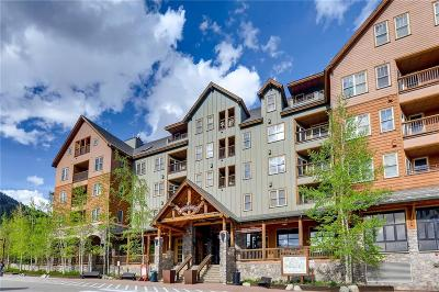 Summit County Condo For Sale: 100 Dercum Square #8383