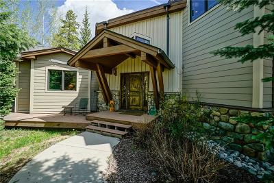 Breckenridge Single Family Home For Sale: 123 Boreas Pass Road Road