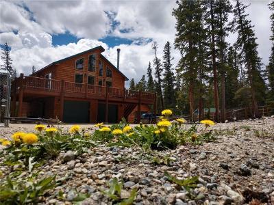 Alma, Fairplay Single Family Home For Sale: 722 Sacramento Crossing