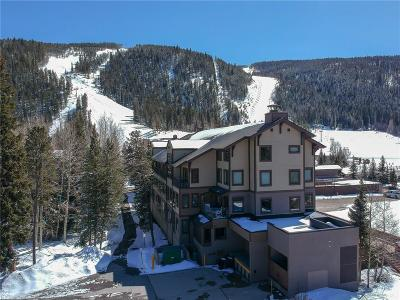 Summit County Condo For Sale: 1211 W Keystone #2747