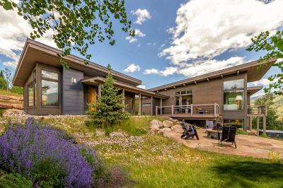 Silverthorne Single Family Home For Sale: 358 Maryland Creek Road