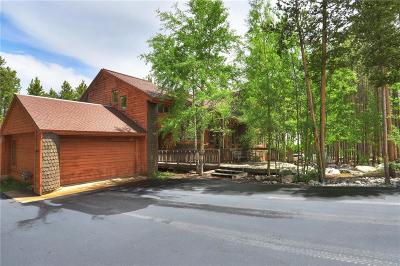 Breckenridge Single Family Home For Sale: 377 Four Oclock Run Road
