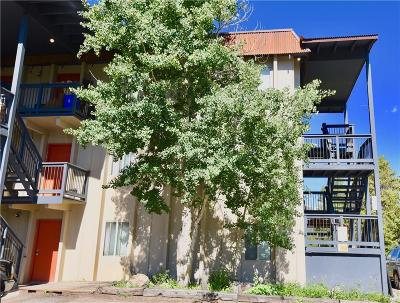 Blue River, Breckenridge Condo For Sale: 303 Overlook Drive #3A