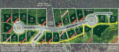 Keystone Residential Lots & Land For Sale: 54 W Trade Court