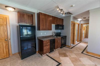 Breckenridge Condo For Sale: 224 S Main Street #RP-20
