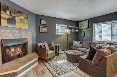 Summit County Condo For Sale: 412 S Main Street #124