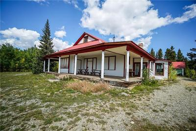 Fairplay, Alma Single Family Home For Sale: 455 Mosquito Pass Road