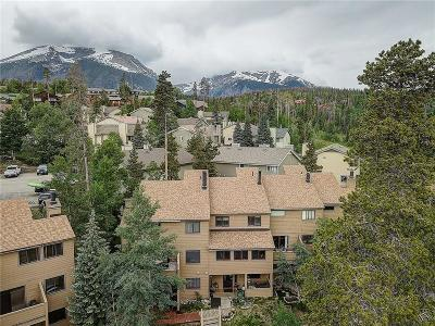 Silverthorne Townhouse For Sale: 6746 Ryan Gulch Road #6746