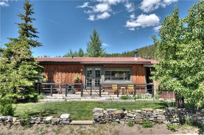 Summit County Single Family Home For Sale: 95 Reliance Drive
