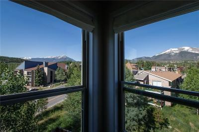 Summit County Condo For Sale: 2710 Ryan Gulch Road #2730