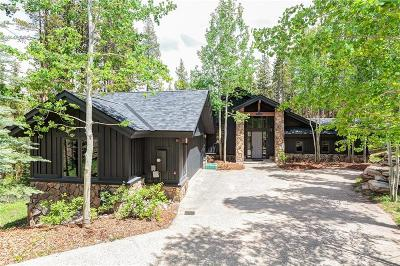 Breckenridge Single Family Home For Sale: 307 Snowflake Drive