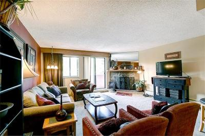 Breckenridge Condo For Sale: 601 Village Road #11070
