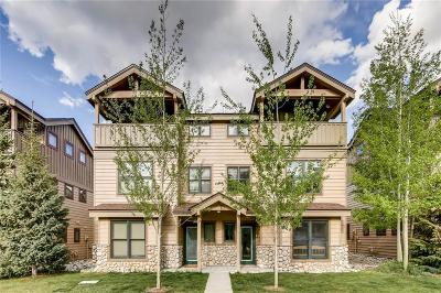 Summit County Townhouse For Sale: 717 Meadow Drive #717B