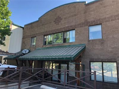 Silverthorne Condo For Sale: 554 Brian Avenue #E-2
