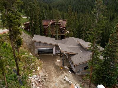 Breckenridge Single Family Home For Sale: 397 Fuller Placer Road
