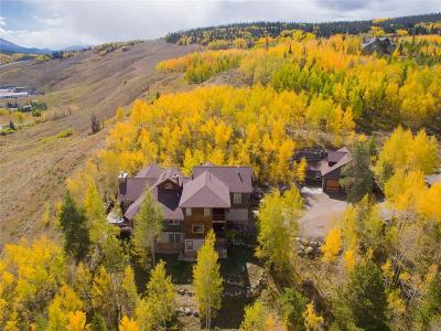 Silverthorne Single Family Home For Sale: 1757 Ruby Road