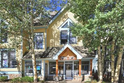 Breckenridge Condo For Sale: 237 S Ridge Street #5