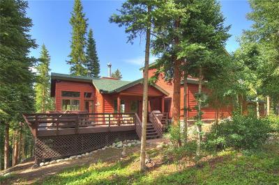 Breckenridge Single Family Home For Sale: 121 Slalom Drive