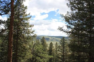 Fairplay, Alma, Como, Jefferson Residential Lots & Land For Sale: Middle Fork Vista