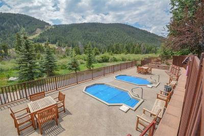 Summit County Condo For Sale: 22714 Us Hwy 6 #5976