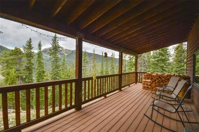 Summit County Single Family Home For Sale: 525 Morgan Gulch Road