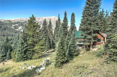 Summit County Single Family Home For Sale: 321 Monte Cristo Mine Road