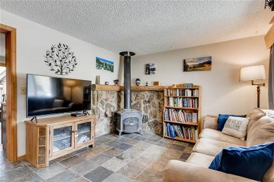 Silverthorne Townhouse For Sale: 342 W 4th Street #342