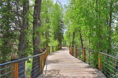 Silverthorne Condo For Sale: 930 Blue River Parkway #1022