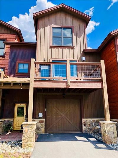 Summit County Townhouse For Sale: 12 Damselfly Loop #47B