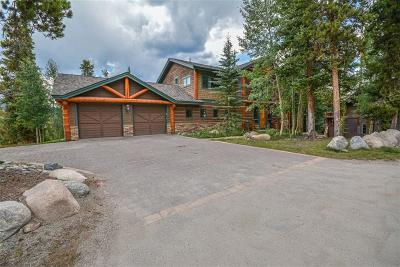 Breckenridge Single Family Home For Sale: 102 Goldenview Drive