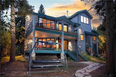 Summit County Single Family Home For Sale: 132 Stonebridge Drive #132
