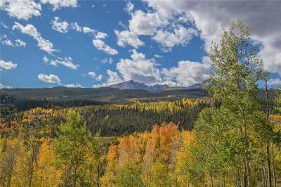 Silverthorne Residential Lots & Land For Sale: 960 Cr 1353