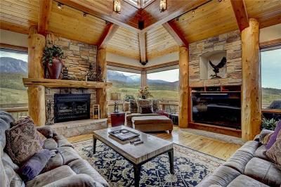 Silverthorne Single Family Home For Sale: 205 Topaz Road