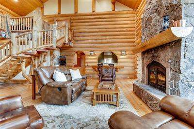 Park County Single Family Home For Sale: 252 S Iron Mountain Road