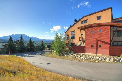 Summit County Condo For Sale: 705 E Anemone Trail 201 #201