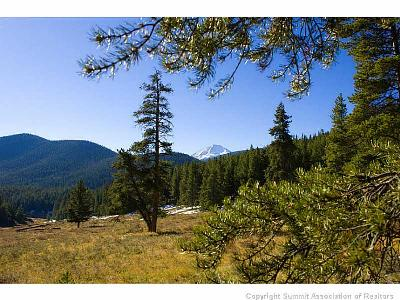 Breckenridge Residential Lots & Land For Sale: 1050 Muggins Gulch Rd Road