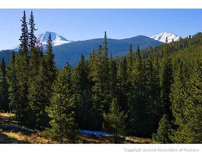 Residential Lots & Land For Sale: 600 Footfalls Ridge Road