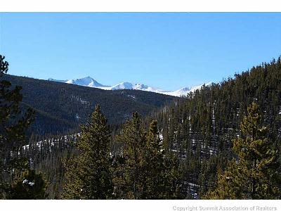 Breckenridge Residential Lots & Land For Sale: 76 Bergen Trail