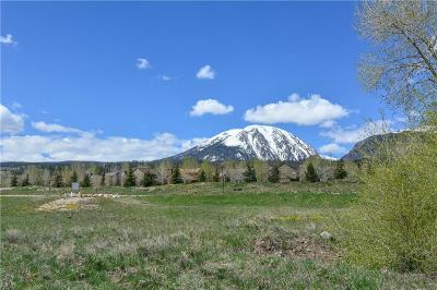 Silverthorne Residential Lots & Land For Sale: Bald Eagle Road