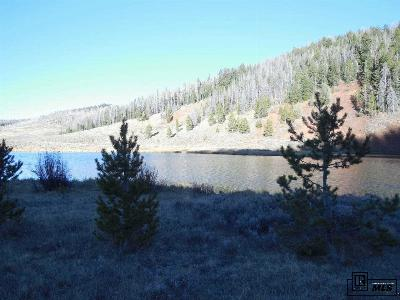 Routt County Residential Lots & Land For Sale: Tbd Hwy 134 #Forest R