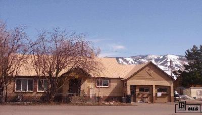 Steamboat Springs Single Family Home For Sale: 582 Laurel Street