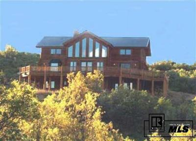 Steamboat Springs Single Family Home For Sale: 26000 Vista Valley Ct