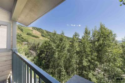 Steamboat Springs Condo/Townhouse For Sale: 2290 Storm Meadows Drive #1