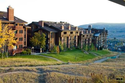 Steamboat Springs Condo/Townhouse For Sale: 2420 Ski Trail Lane #615