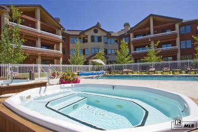 Steamboat Springs Condo/Townhouse For Sale: 1875 Medicine Springs Drive #4102