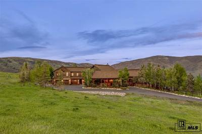 Steamboat Springs Single Family Home For Sale: 32120 County Road 14c