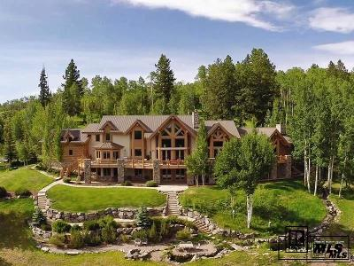 Steamboat Springs Single Family Home For Sale: 27795 County Road 14